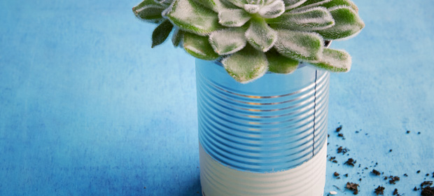 Mit der Dose Kokosmilch dekorieren: Dosen-Upcycling