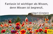 Fantasie Einstein