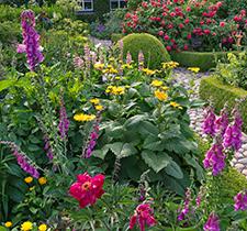Garten Step-by-Step 2