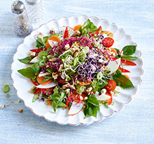 Wildkräuter-Sprossen-Salat