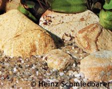 Aquarium einrichten: Kieselsteine