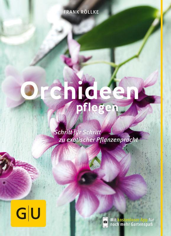 orchideen pflegen buch gu. Black Bedroom Furniture Sets. Home Design Ideas
