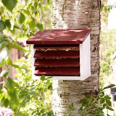 bauteile und vorlagen f r nisthilfen insektenhotels und. Black Bedroom Furniture Sets. Home Design Ideas