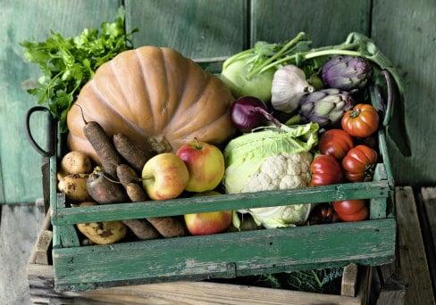Biokiste Bauernmarkt