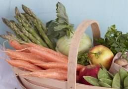 Korb mit frischem Obst und Gemuese