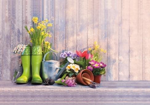 Blumen und Gartenutensilien