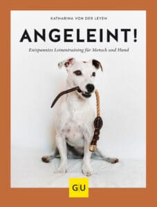 Angeleint! - Buch (Hardcover)