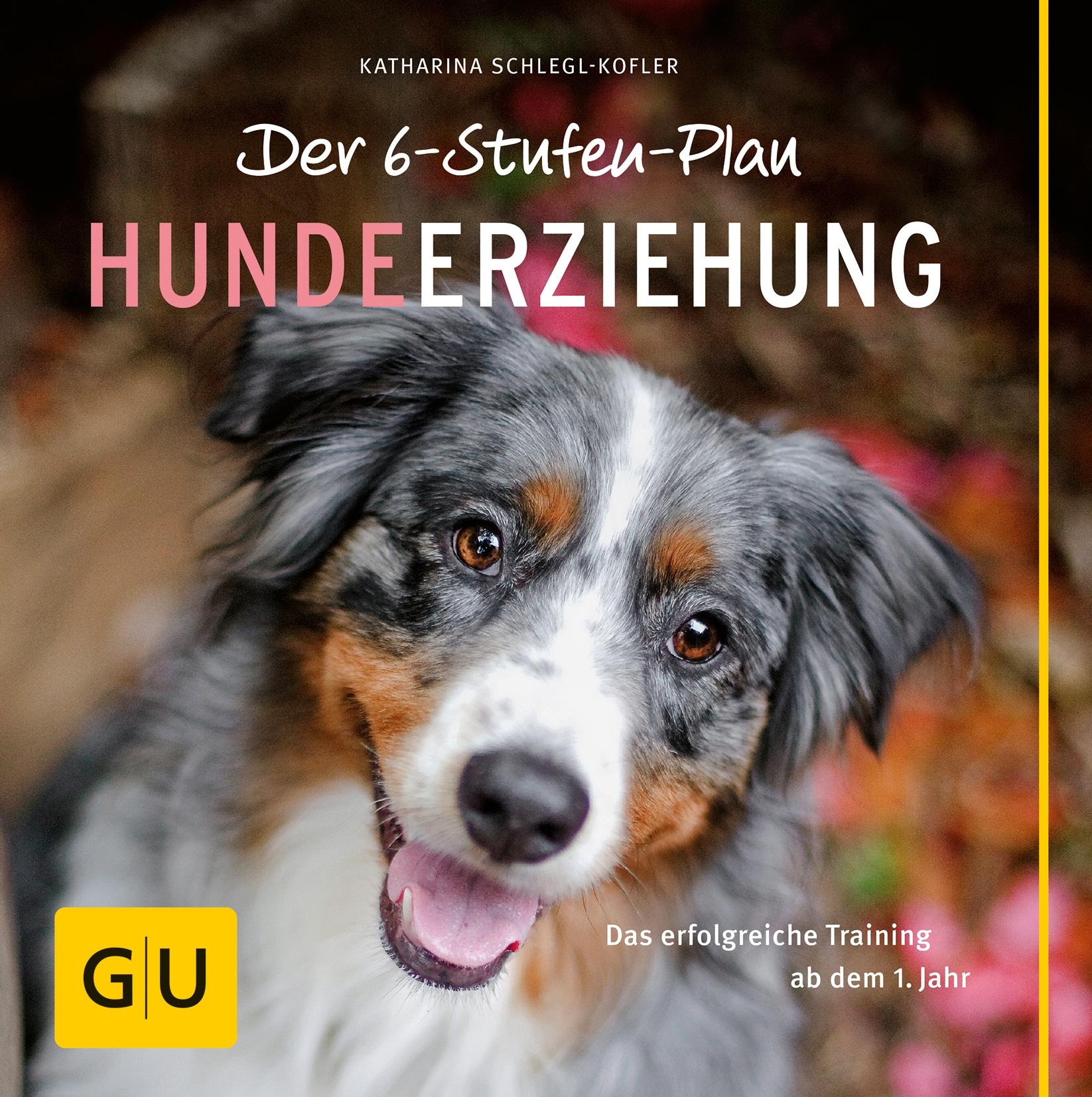 Der 6-Stufen-Plan Hundeerziehung - Buch (Softcover)