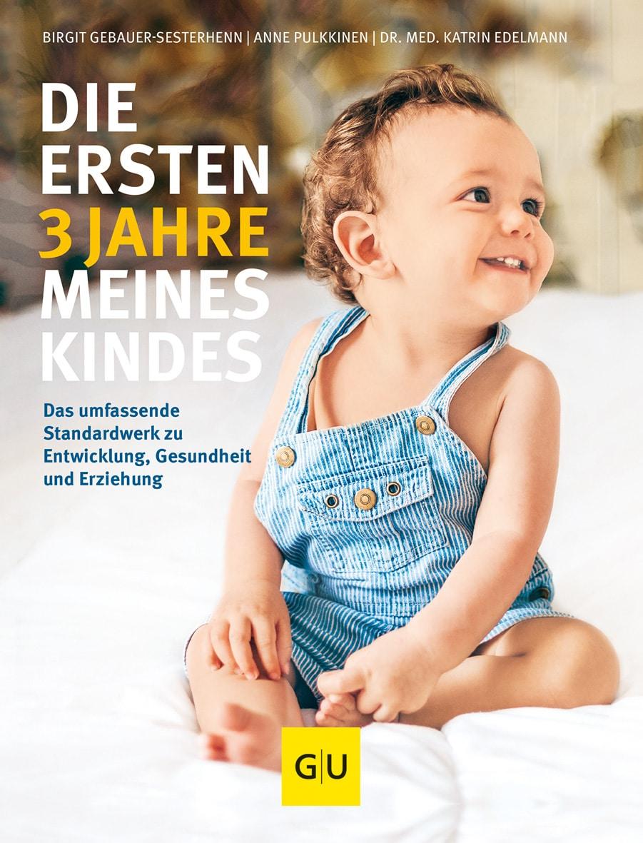 Die ersten 3 Jahre meines Kindes - Birgit Gebauer