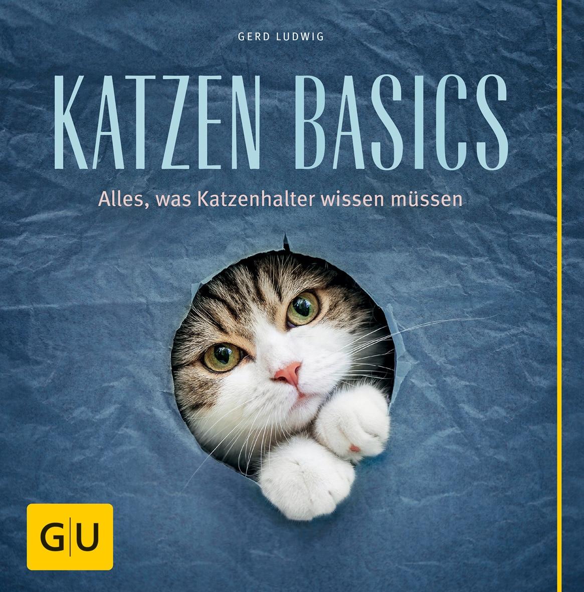 Katzen-Basics - Buch (Softcover)