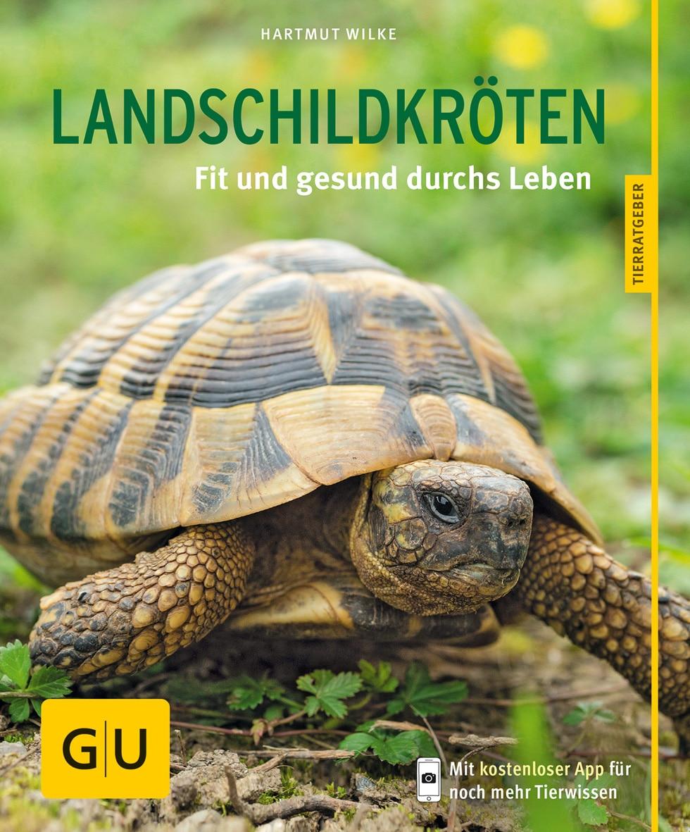 Landschildkröten - Buch (Softcover)