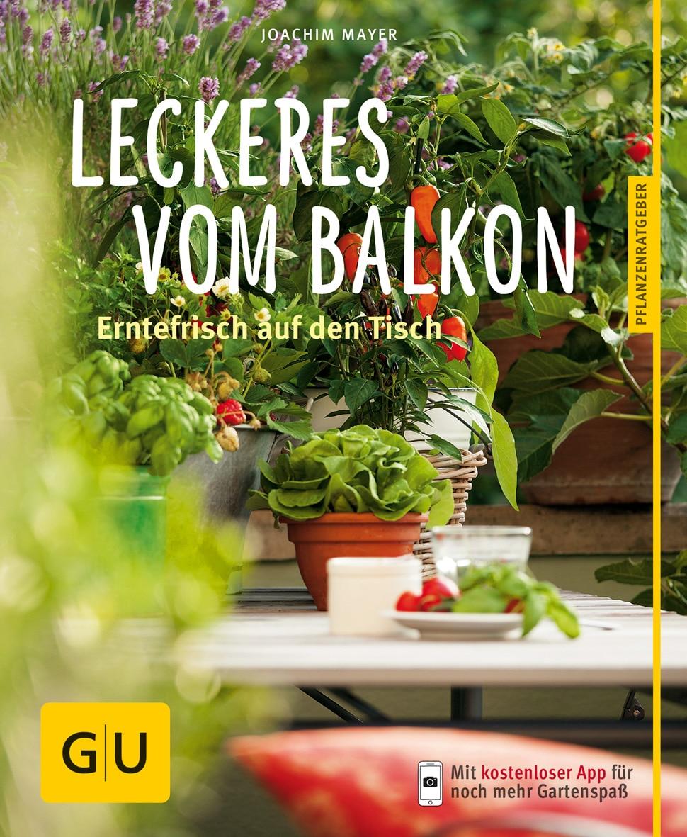 Leckeres vom Balkon - Buch (Softcover)