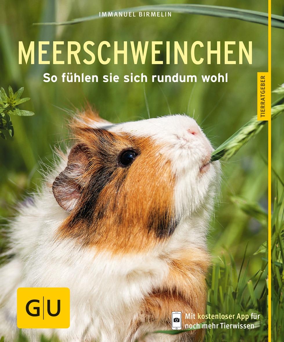 Meerschweinchen - Buch (Softcover)