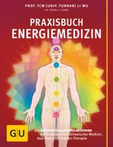 Praxisbuch Energiemedizin - Buch (Softcover)