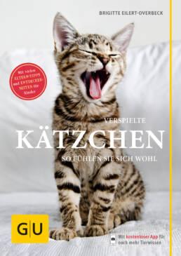 Verspielte  Kätzchen - Buch (Softcover)