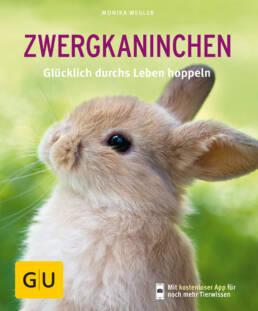 Zwergkaninchen - Buch (Softcover)