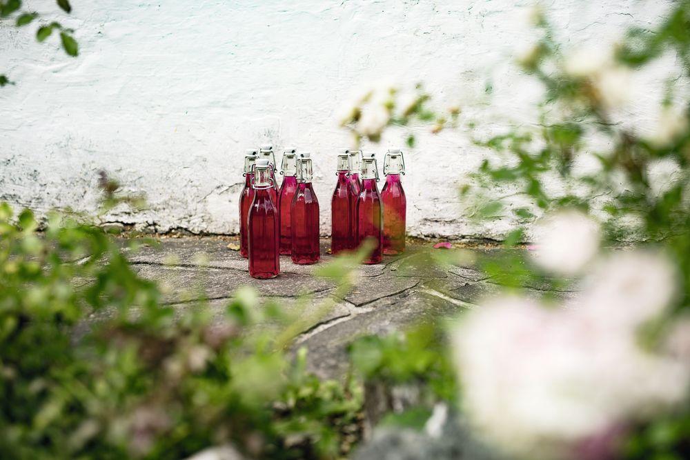 Heilpflanzensäfte auf Vorrat herstellen von Peter Emmrich