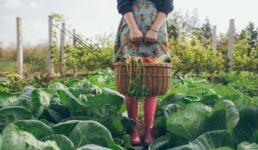 Frau mit Korb im Beet