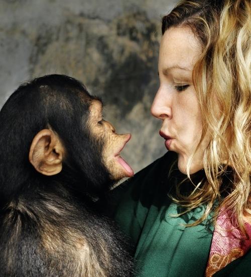 Affe und Frau sprechen miteinander