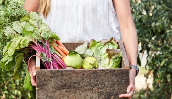 Frau hält Kiste mit Biogemuese