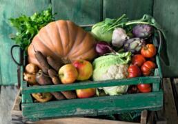 U1_Bauernmarkt-Biokiste_500x350