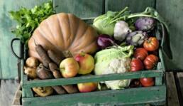 Bauernmarkt-Biokiste
