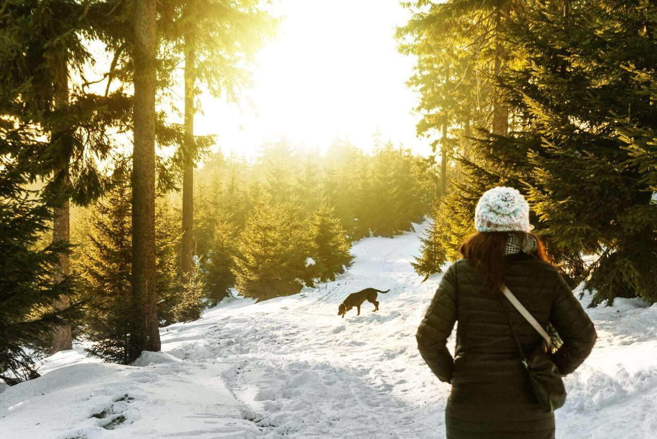 Frau beim Spazierengehen im Wald