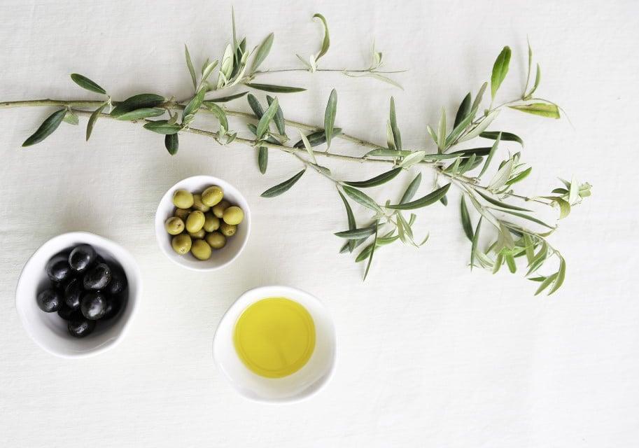 Olivenzweig, Oliven und Olivenöl