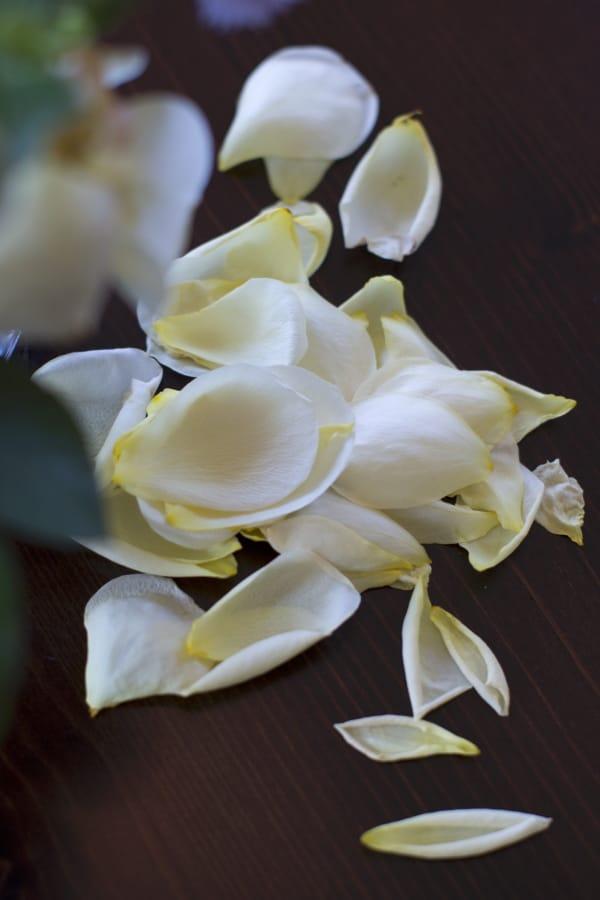 Abgefallene Rosenblätter